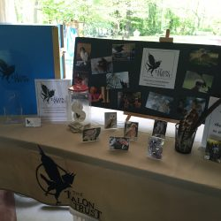 The Talon Trust table display